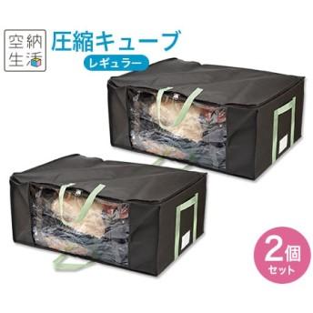 空納生活 圧縮キューブ レギュラー2個セット