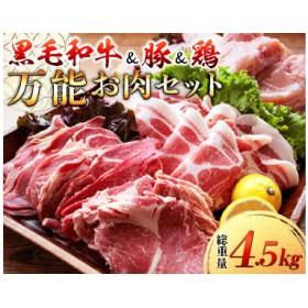 〈黒毛和牛&豚&鶏〉万能お肉セット(総重量4.5kg)