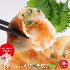 えびしそ餃子30個【宮崎 高鍋町】【冷凍餃子】【お取り寄せ】