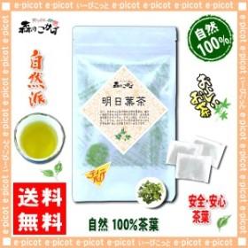 国産 明日葉茶 (2g×30p 内容量変更) ティーバッグ アシタバ茶 100% 送料無料 森のこかげ 健やかハウス