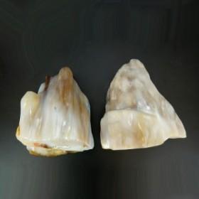 送料無料 精霊の宿る天然石 樹化玉 (樹化石) 台座付2.3kg インテリアストーン 置物 天然石 パワーストーン 化石