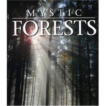 Mystic Forest [HD DVD] [Import](中古品)