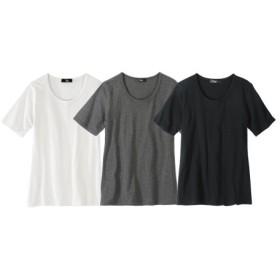 綿100%半袖クルーネックTシャツ3枚組 (大きいサイズレディース)Tシャツ・カットソー