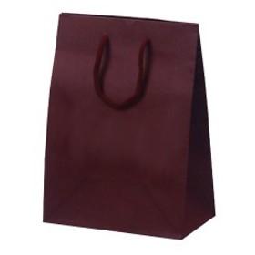 ベルベ 手提げ紙袋 T-2 カラークラフト ワイン 10枚 1024