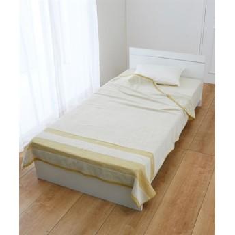 綿100%のタオルケット タオルケット・肌掛け布団・キルトケット