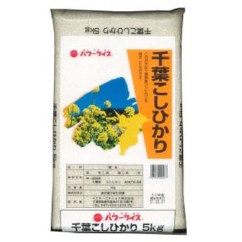 お米 ごはん 精米 千葉こしひかり 5kg パワーライス