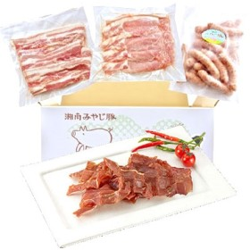 [湘南みやじ豚]BBQセット+ポークジャーキー 精肉