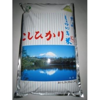 大山しらゆき米(コシヒカリ)10㎏