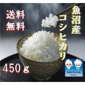 ポイント消化 送料無料 500 食品 米 お試し 魚沼産コシヒカリ 450g(3合) 1kg未満 代金引換不可