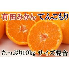 [厳選]紀州有田みかんてんこもり10kg(サイズ混合) 【和歌山厳選館】
