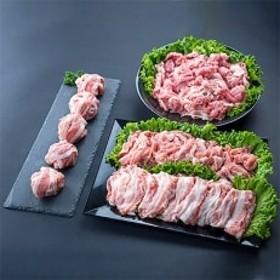 黒潮ポーク 国産豚切り落としセット(計2.2kg)