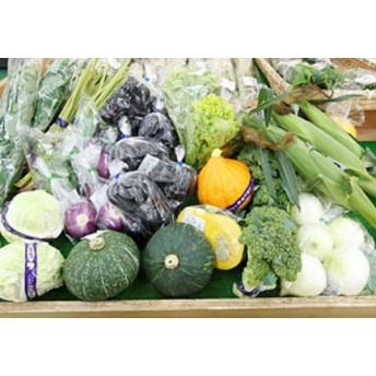 山形市農産物詰合せ(5~10品程度)
