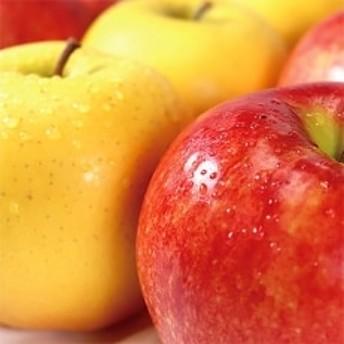 【信州須坂のりんご】 食べくらべ二種セット 約5kg(シナノゴールド&サンふじ) 信州グルメ市場