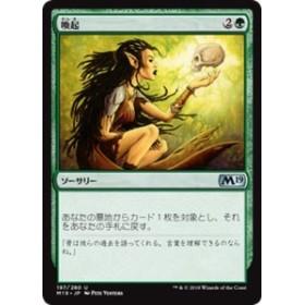 MTG マジック:ザ・ギャザリング 喚起(アンコモン) 基本セット2019(M19-197)   日本語版 ソーサリー 緑