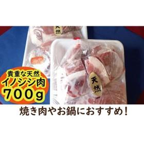 北川産イノシシ肉