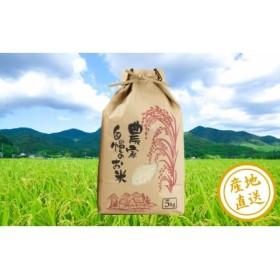 □【鹿児島県南さつま市産】農家自慢のお米 5kg