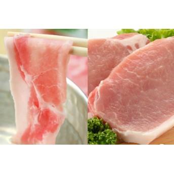 □【鹿児島県産】茶美豚 詰め合わせ(しゃぶしゃぶ/焼肉/とんかつ) 2.4kg