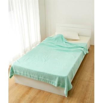 肌ざわりと吸水性が良い新疆綿 選べる4色タオルケット タオルケット・肌掛け布団・キルトケット