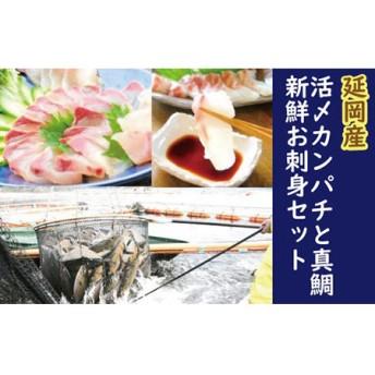 延岡産活〆カンパチと真鯛の新鮮お刺身セット