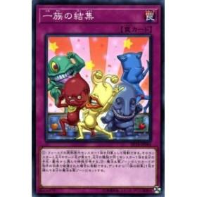 ポケモンカードゲーム Smh Gxスタートデッキ アローラ ダグトリオ