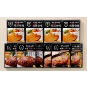 マイスター山野井 焼豚カレー&黒豚ハンバーグセット