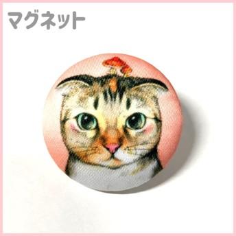 マグネット 猫イラスト スコティッシュフォールド うずちゃん