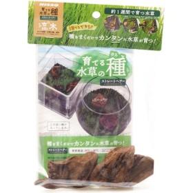 ニッソー 育てる水草の種 ストレートヘアー&流木 【在庫有り】(新商品)