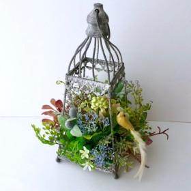 Lantern arrange