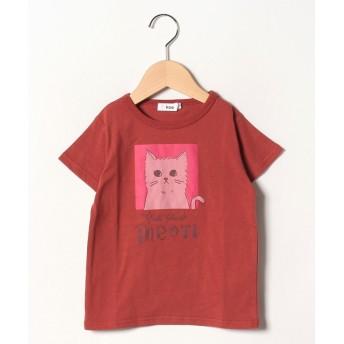 【50%OFF】 コエ ネコグラフィック半袖Tシャツ レディース レッド 140 【koe】 【セール開催中】