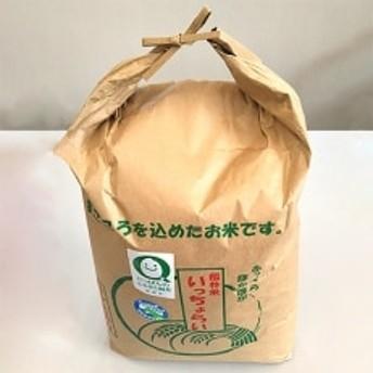 令和元年福井県産特別栽培米「いっちょらい」コシヒカリ精米10kg×1袋