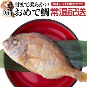犬用 おせち(お頭付き鯛)2019年 犬・おせち料理【真空パック 常温配送】