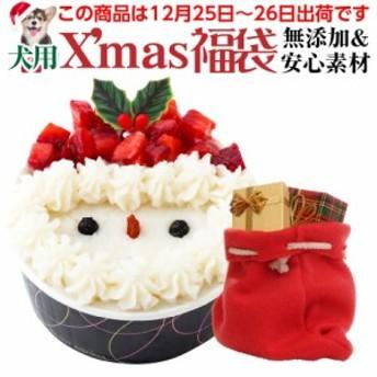 【順次配送】犬用クリスマスケーキ+ケーキ 等2点入り(クリスマス福袋)