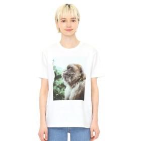 [マルイ] 【ユニセックス】Tシャツ/カズンズオブザロック(ダニエルアルフォード)/グラニフ(graniph)
