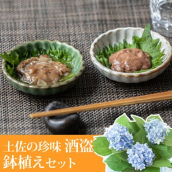 【父の日フラワーギフト】 アジサイ鉢植えセット「吉永鰹節店 土佐の珍味=酒盗=」