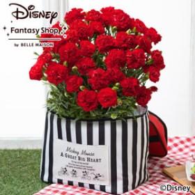 【母の日フラワーギフト】 ディズニー 鉢植え「チアフル・カーネーション/ミッキーマウス」