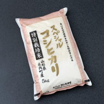 庄内町産スペシャルコシヒカリ(A(1袋))