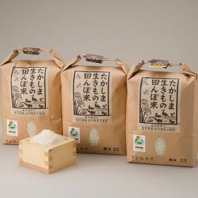 生きもの田んぼ米コシヒカリ(3袋)