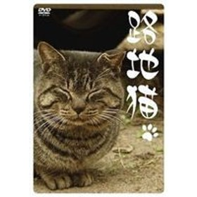 [DVD] 路地猫
