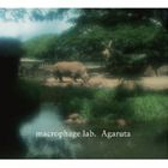 [CD] macrophage lab./AGARUTA