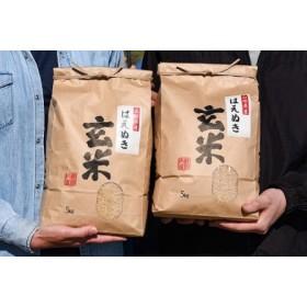 ◆こだわりの自家栽培米◆ 山形県産はえぬき玄米10kg(5kg×2袋) 2019年産新米 010-C07