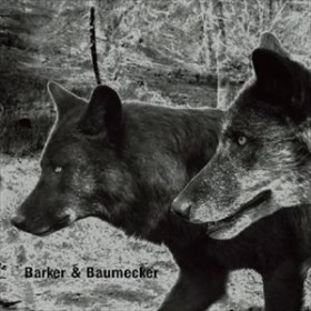 [CD] バーカー&バウムエッカー/トランスセクトラル