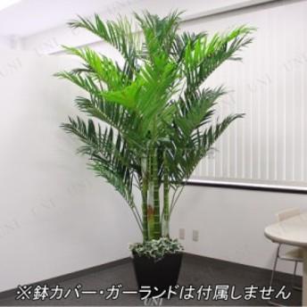 人工観葉植物 光触媒 アレカヤシ 250cm 消臭 光触媒 フェイクグリーン ヤシの木 インテリア 大きい 椰子 インテリアグリーン 抗菌