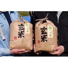 ◆減農薬栽培米だから安心安全◆ 山形県産つや姫玄米8kg(4kg×2袋) 2019年産新米 010-C08