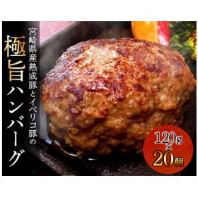 宮崎県産熟成豚とイベリコ豚のハンバーグ120g×20個