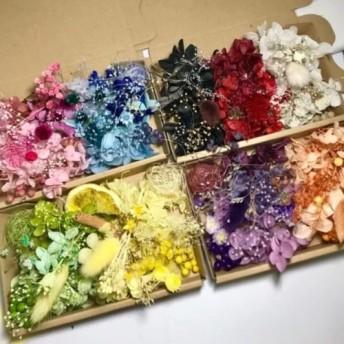 全9カラー揃います*ハーバリウム花材ドライフラワー 花材セット 4Boxセット