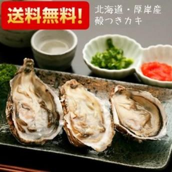 生牡蠣 生がき かき 北海道 厚岸産 殻つきカキ 生食用 LLサイズ(特大)20個 ナイフ付き