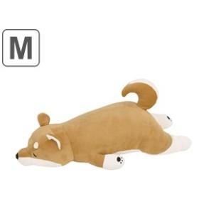 抱き枕 ぬいぐるみ 犬 プレミアムねむねむアニマルズ コタロウ Mサイズ ( 抱きまくら 動物 イヌ プレミアム 枕 まくら クッション もち