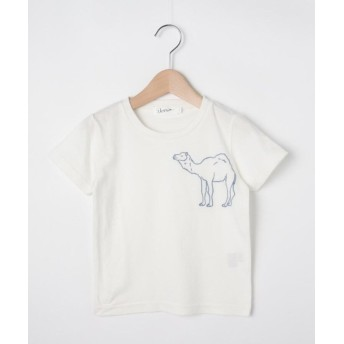 【50%OFF】 デッサン 天竺 らくだ刺しゅうTシャツ レディース ホワイト(001) 11(110cm) 【Dessin】 【セール開催中】