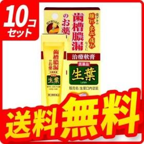 生葉口内塗薬 20g 10個セット  第3類医薬品