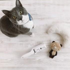 【猫壱】抜け毛取りワイパー  猫
